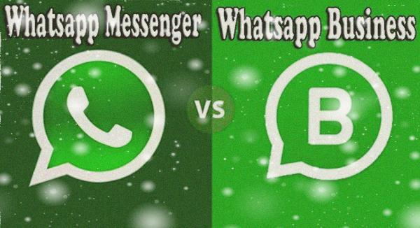 بين Whatsapp و Whatsapp business - موبي زووم